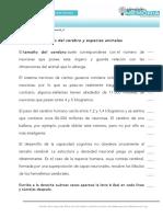 Ficha_de_trabajo_2017_semana36