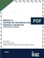 Módulo-2.-Sistema-de-Seguridad-Social-en-Riesgos-Laborales.pdf
