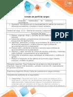 3.Formato - perfil de cargos.docx