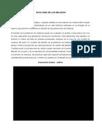 362619598-Ecologia-de-Las-Malezas.docx