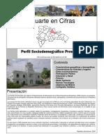 Perfil Sociodemográfico provincial, 2008 (2)
