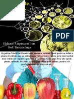 Organismele modificate genetic
