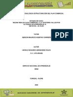 Estudio_de_caso_Milena_realiza_plan_comercial_a_la_cafeter ía_Vallecitos_-_AAP_10