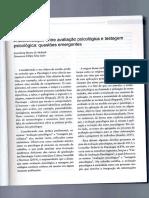 A diferenciação entre avaliação e testagem psicológica