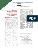 HIDROGEOLOGÍA MARINA ARTICULO 2 COLUMNAS.pdf