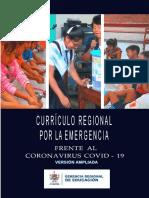 Currículo emergencia 2020- Ampliado (1).pdf
