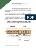 Coronavirus contiene VIH-Sida 07.pdf