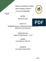 141127 VAZQUEZ VELA GABRIEL ENRIQUE ENSAYO N.4.docx