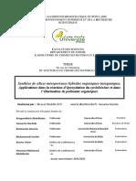 11201224t.pdfm,nqno;qteriqux hybrides bqndou sq;irq.pdf