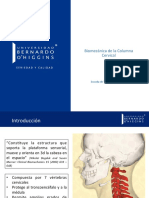 C2 - Columna Cervical