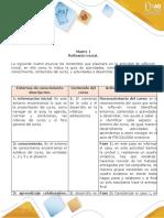 Matriz 1 Reflexion inicial_gisell karina pallares.doc