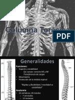 C3 - Columna Torácica