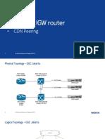 SF CGNAT & IGW Presentation Part2