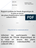 rapport-synthc3a8se-de-l_c3a9tude-diagnostique-de-la-mise-en-c593uvre-des-pai-et-pac (2)