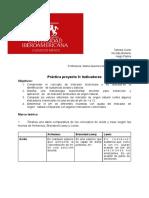 Práctica 9 proyecto pdf