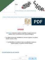 lipidos medicina1