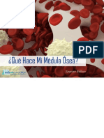 Blood-Marrow-Booklet_Spanish_Low-Res.pdf