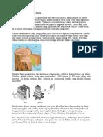 Proses pembuatan Paper.docx