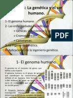 LA GENETICA Y EL HUMANO