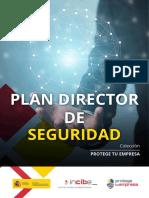 metad_plan-director-seguridad