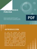 LEPTOSPIROSIS PORCINA (1)