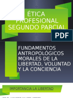SEGUNDO PARCIAL.pptx