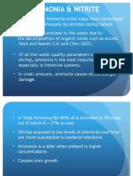 Ammonia & Nitrite Problem in Shrimp culture ponds