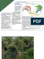 Luncile Si Delta Dunarii