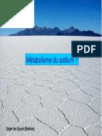 20080125_metabolisme_du_sodium