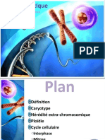 Cytogénétique