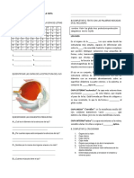 sistemasensorialdelavistataller-150310163358-conversion-gate01 (1).pdf