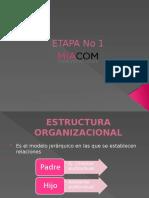 AVANCE ETAPA I.pptx