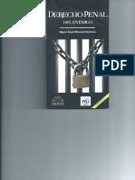 Derecho Penal del Enemigo Miguel Angel Mancera 2-1.pdf (1)