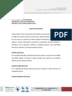 Ejercicios Resistidos.pdf