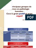 bacterio3an16m-11cocci_positif_negatif-fouathia