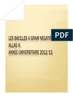 bacterio3an-bacilles_gram_negatif