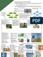 4. Sintesis de mipe
