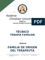 FAMILIA-DE-ORIGEN-DEL-TERAPEUTA-TECNICO