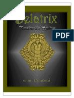 Belatrix - Paradoxo Das Sombras - e. m. Tronconi (2012)