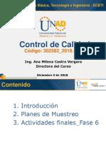 WC6- CC-Planes de muestreo.pdf