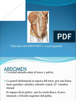 pared abdominal y canal inguinal.pdf