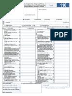 FORMULARIO 110.pdf