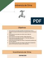 1.INCONTINENCIA DE ORINA.pdf