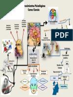 mapamentalconocimientospsicolgicos-161104134959.pdf