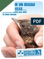 secourir un oiseau en detresse 2014