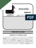 4.BOLETÍN.BIO-P.O-L.Acurio-Nov.2010.doc