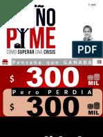 DUEÑO PYME