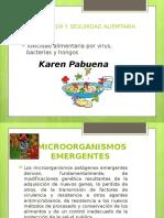 presentacion microorganismos emergentes