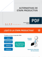 AlternativasnEtapanProductiva___775e811d3736187___