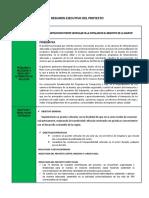 02. RESUMEN CONSTRUCCION PUENTEVILLA COPALANI.docx